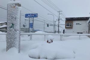 【日本麥當勞】踏入冬天麥當勞叔叔像被雪埋 日本麥當勞最北端分店成打卡熱點