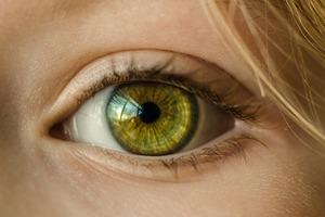 【護眼食物】低頭族注意!只吃藍莓是不夠 細數4種護眼營養素/有效預防乾眼症白內障