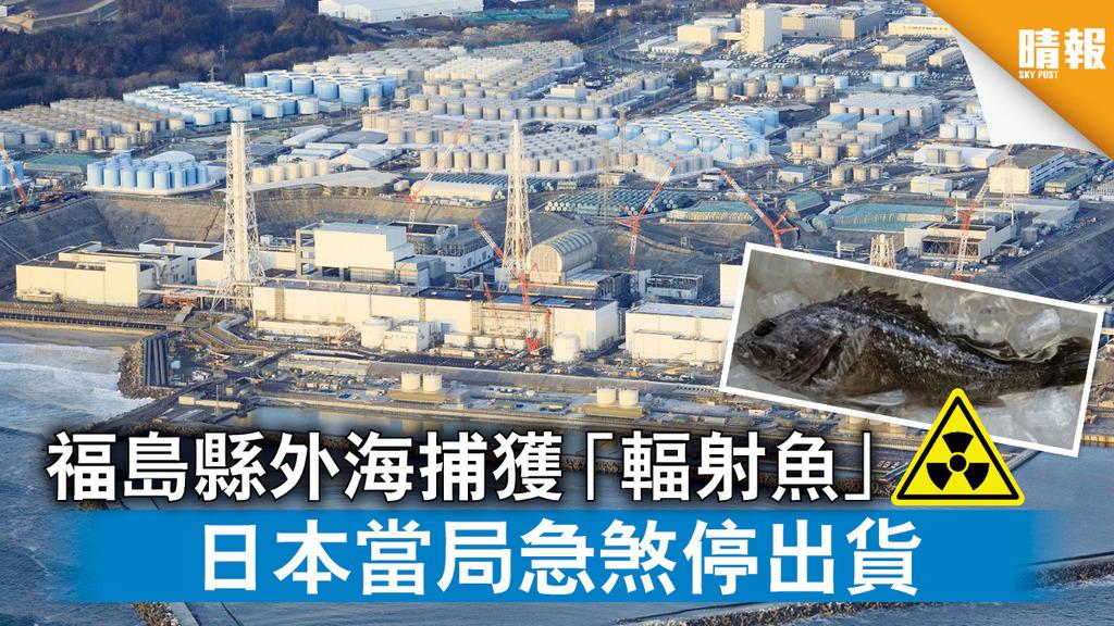 輻射遺害|福島縣外海捕獲「輻射魚」 日本當局急煞停出貨
