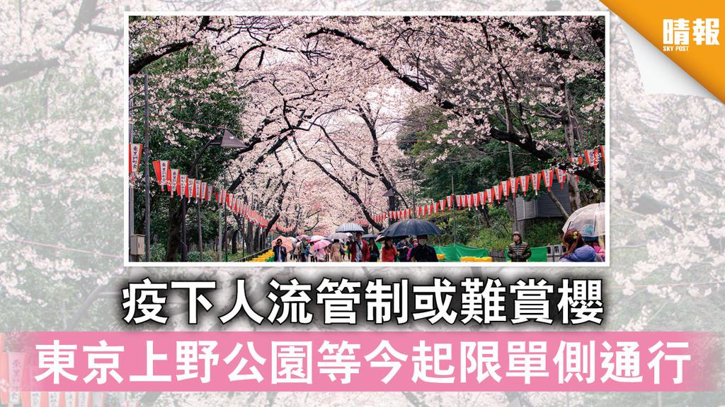 日韓記事|疫下人流管制或難賞櫻 東京上野公園等今起限單側通行