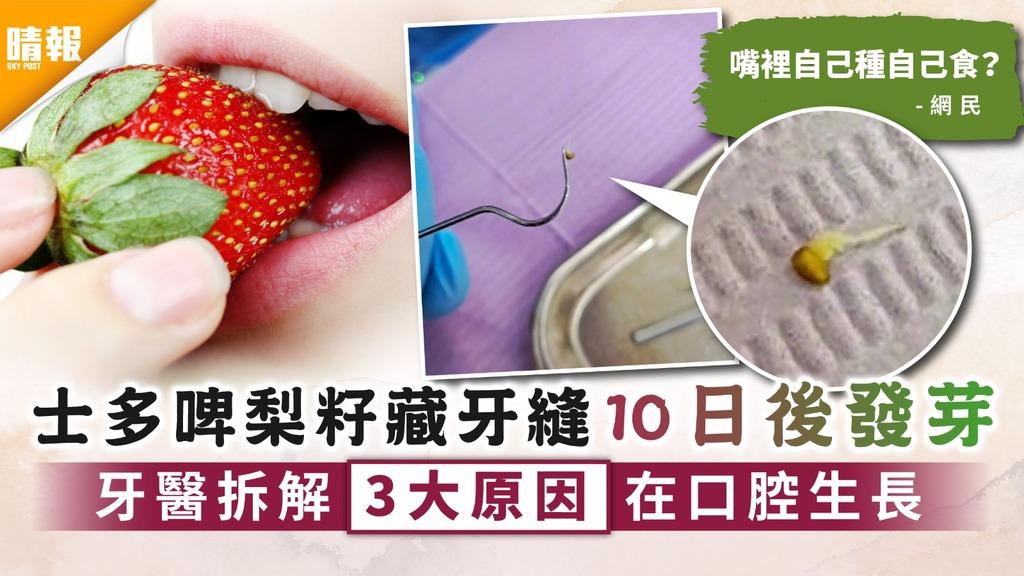 牙齒護理︳士多啤梨籽藏牙縫10日後發芽 牙醫拆解3大原因在口腔生長