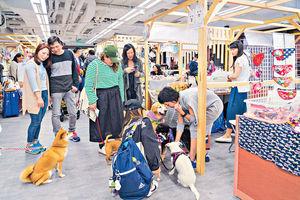 赤柱廣場搞虛擬城市定向競賽 與愛犬齊做善事