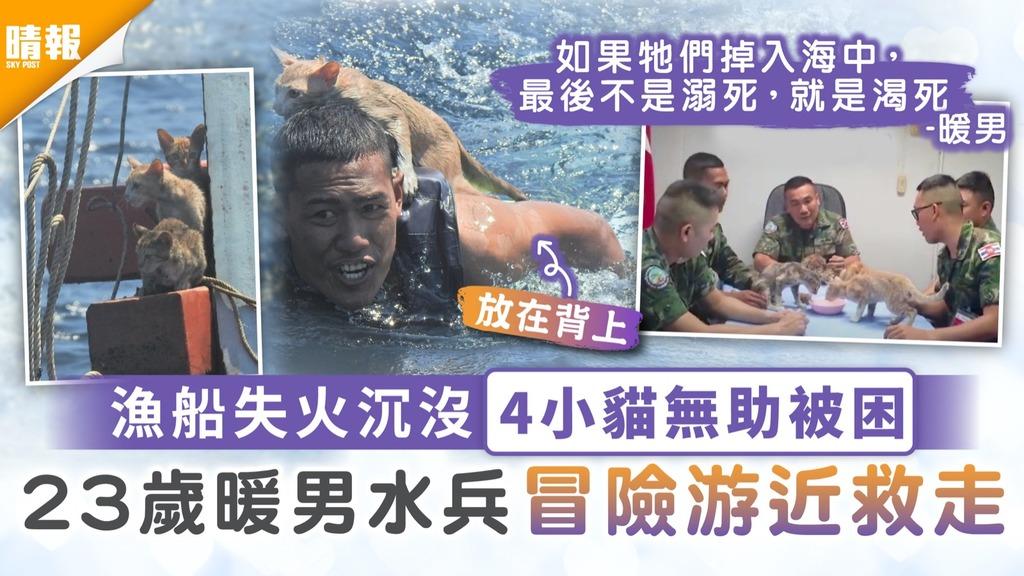 鐵漢柔情|漁船失火沉沒4小貓無助被困 23歲暖男水兵冒險游近救走