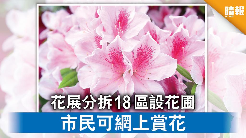 花展2021|花展分拆18區設花圃 市民可網上賞花 (附場地資料)