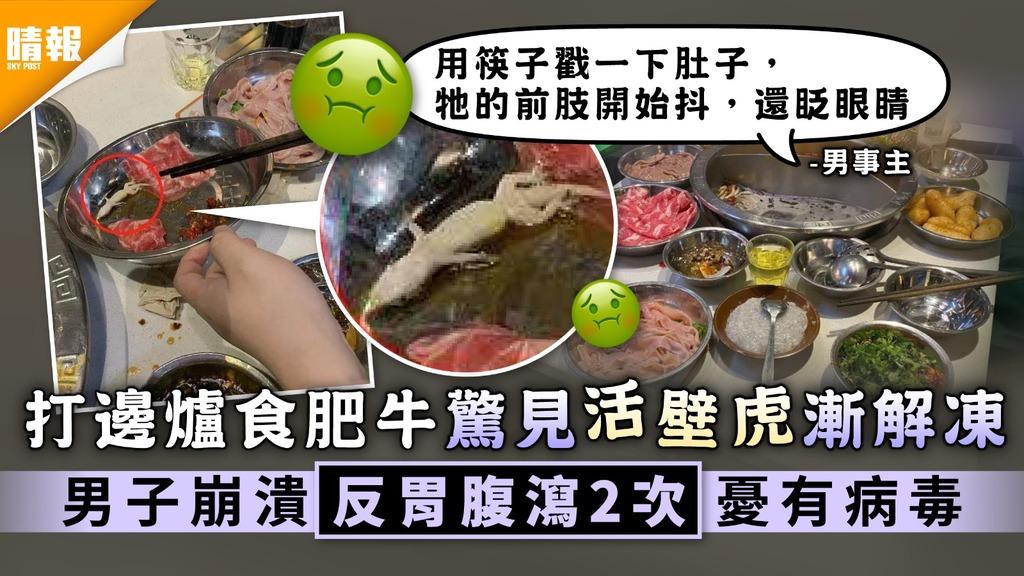 食用安全 打邊爐食肥牛驚見活壁虎漸解凍 男子崩潰反胃腹瀉2次憂有病毒
