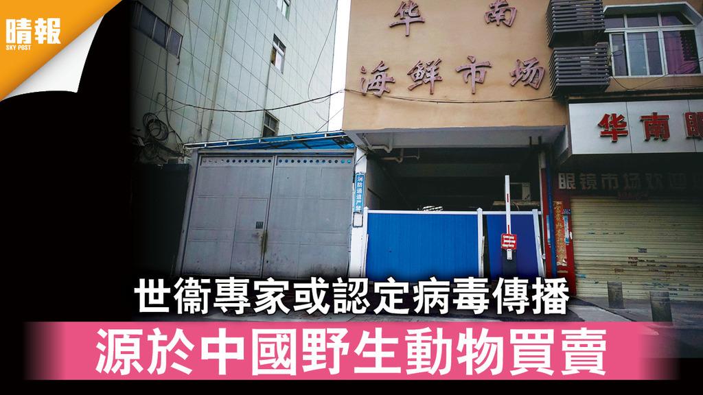 新冠肺炎|世衞專家或認定病毒傳播 源於中國野生動物買賣