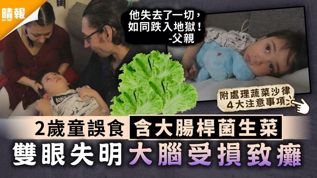食物安全 2歲童誤食含大腸桿菌生菜 雙眼失明大腦受損致癱