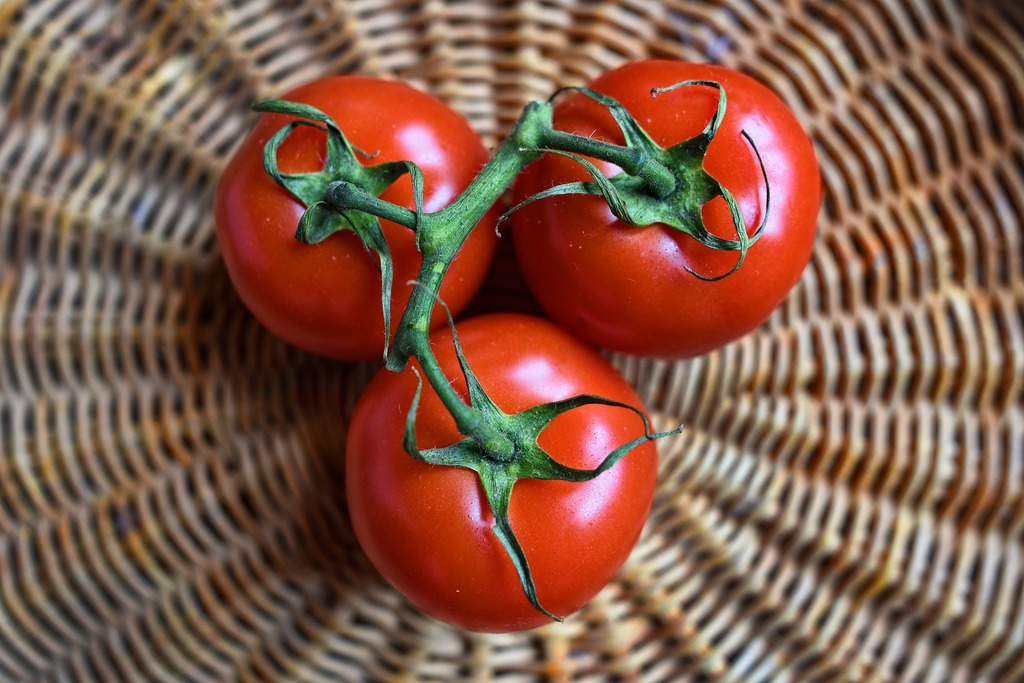【糖尿病飲食】科學實証5大食物有助穩定血糖 番茄/橙可有效預防糖尿病