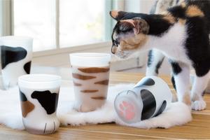 【日本手信】日本手作玻璃品牌Coconeco可愛貓腳杯 造型逼真杯底印有貓掌肉球+倒入飲品超驚喜!