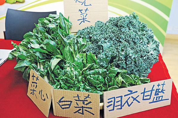 浸大抽驗蔬菜樣本 73%含除害劑 最勁超標6.7倍