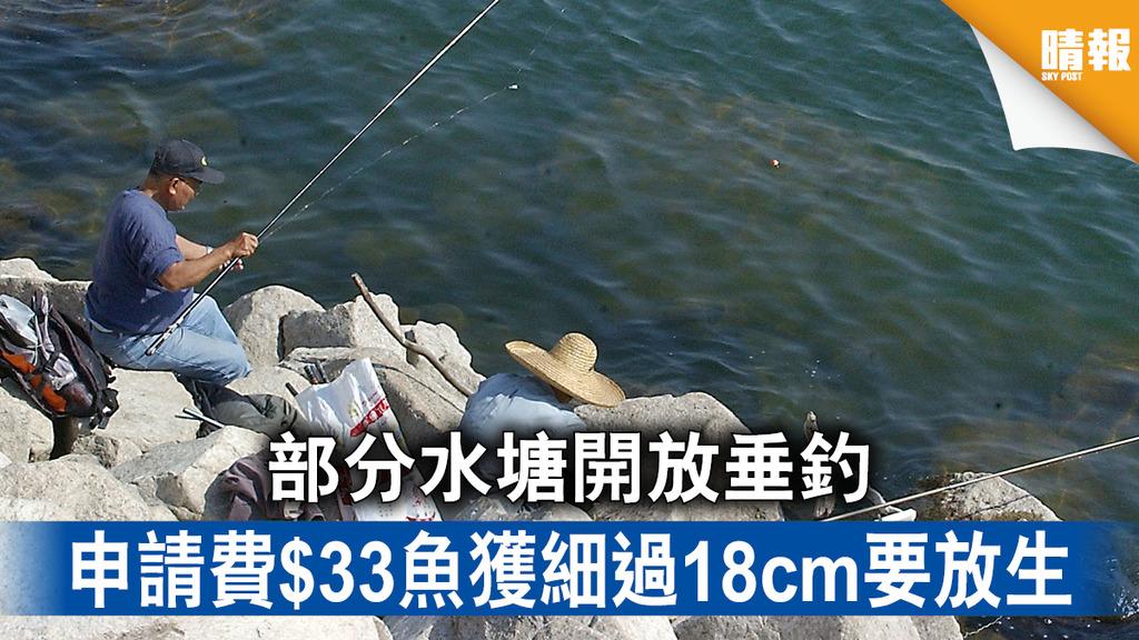 釣魚樂|部分水塘開放垂釣 申請費$33魚獲細過18cm要放生