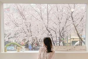 【韓國Cafe】韓國櫻花小路旁新開打卡Cafe   歎住咖啡賞櫻超舒服!