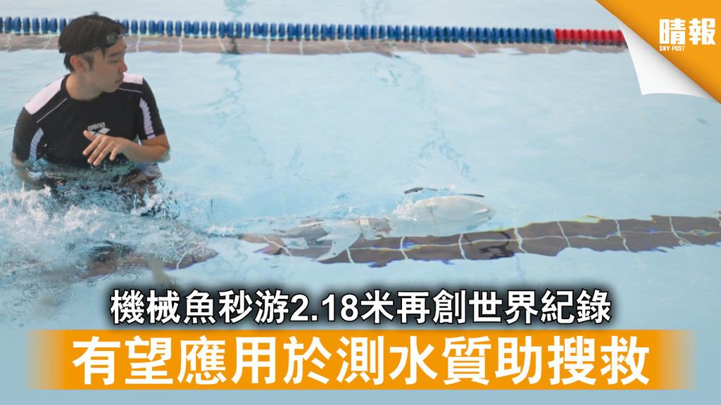 港大研究|機械魚秒游2.18米再創世界紀錄 有望應用於測水質助搜救