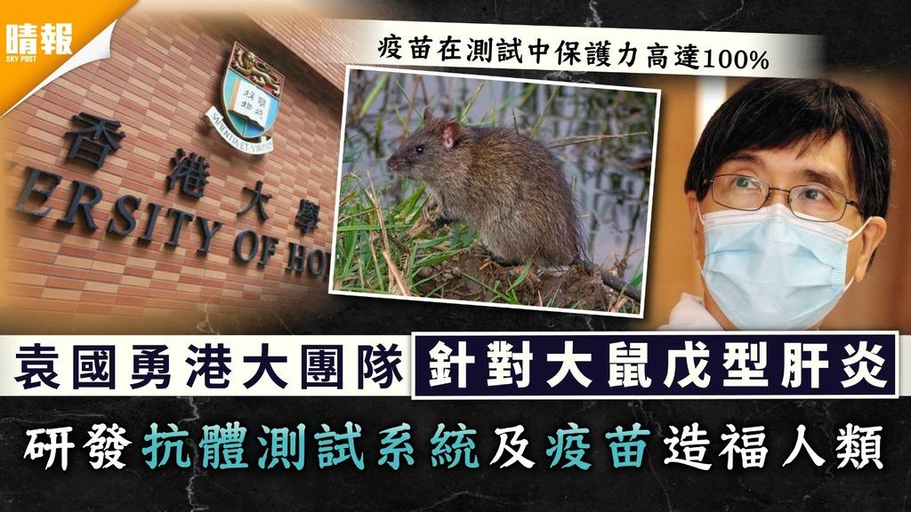 科研成果|袁國勇港大團隊針對大鼠戊型肝炎 研發抗體測試系統及疫苗造福人類