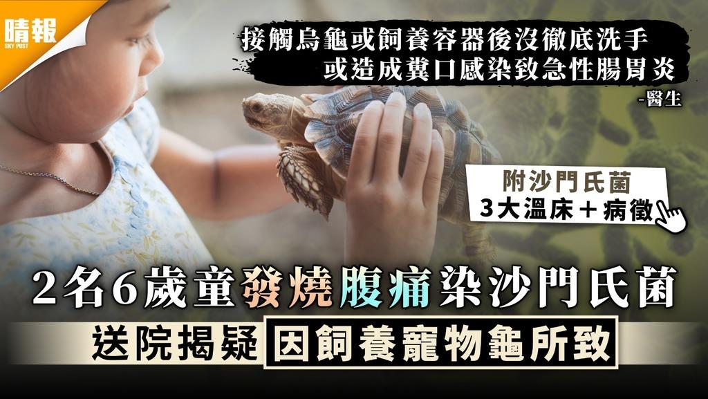 沙門氏菌 | 2名6歲童發燒腹痛染沙門氏菌 送院揭疑因飼養寵物龜所致 | 附3大病菌溫床及病徵