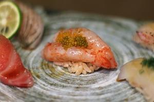 【omakase lunch推介】5間廚師發辦Omakase平價推介 午餐最平$350!歎日本直送壽司刺身