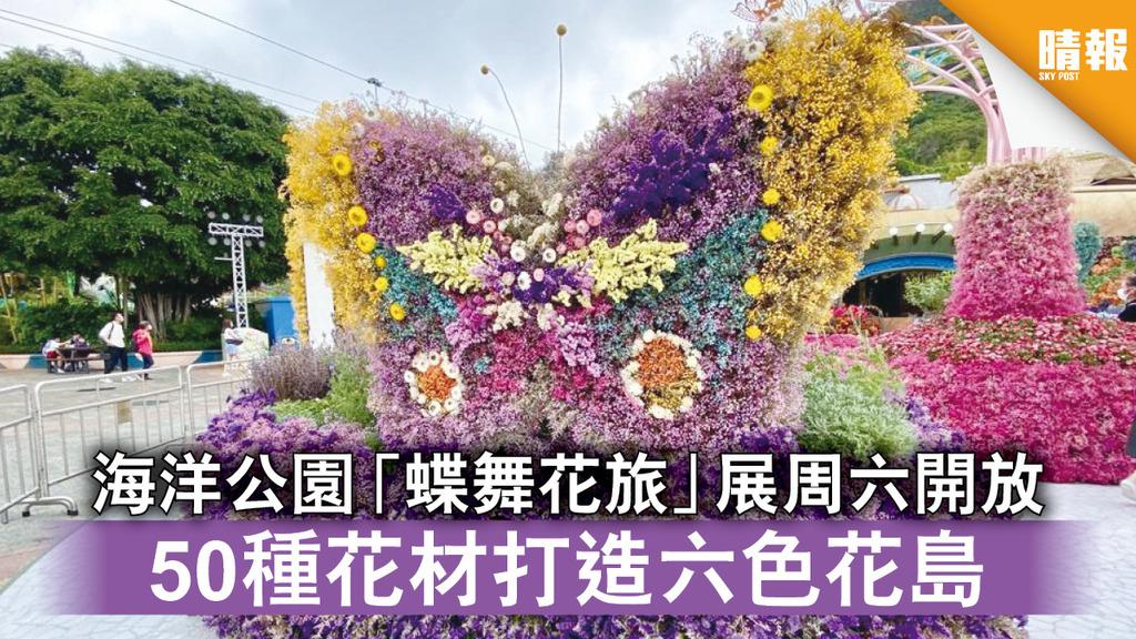 海洋公園|「蝶舞花旅」展周六開放 50種花材打造六色花島