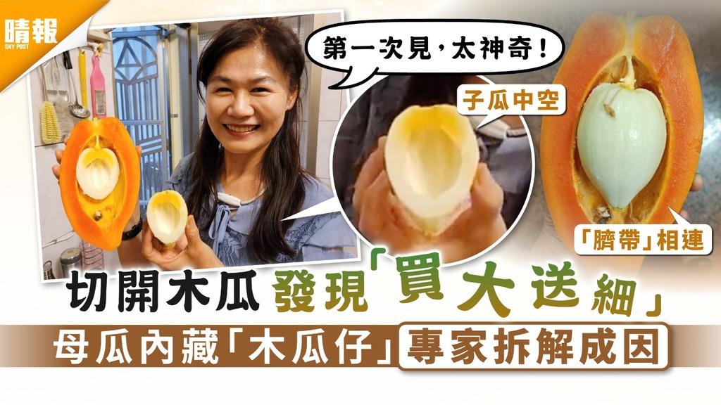 食用安全|切開木瓜驚見「買大送細」 母瓜內藏「木瓜仔」專家拆解成因