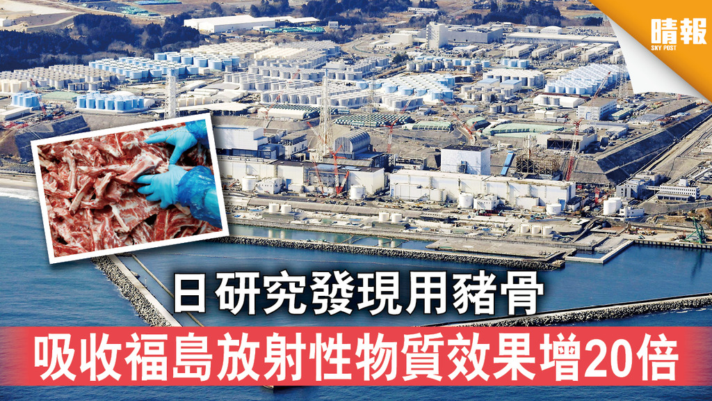 福島核災 日研究發現用豬骨 吸收褔島放射性物質效果增20倍