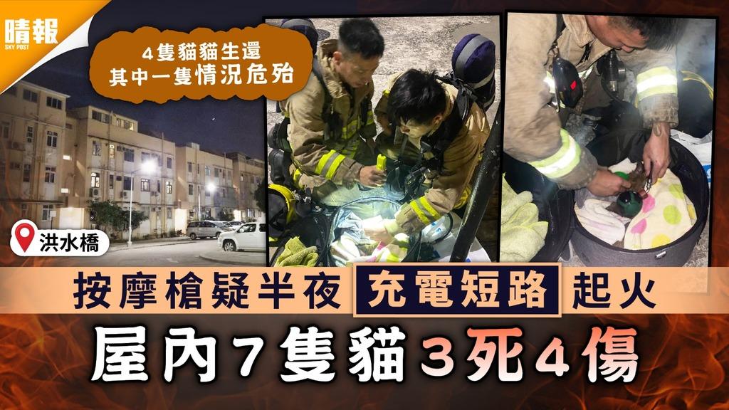 家居意外|洪水橋按摩槍疑半夜充電短路起火 屋內7隻貓3死4傷
