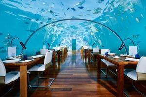 【世界最貴餐廳】第一位過萬元!盤點10大全球最昂貴餐廳 高科技多重感官體驗Sublimotion/馬爾代夫海底餐廳Ithaa