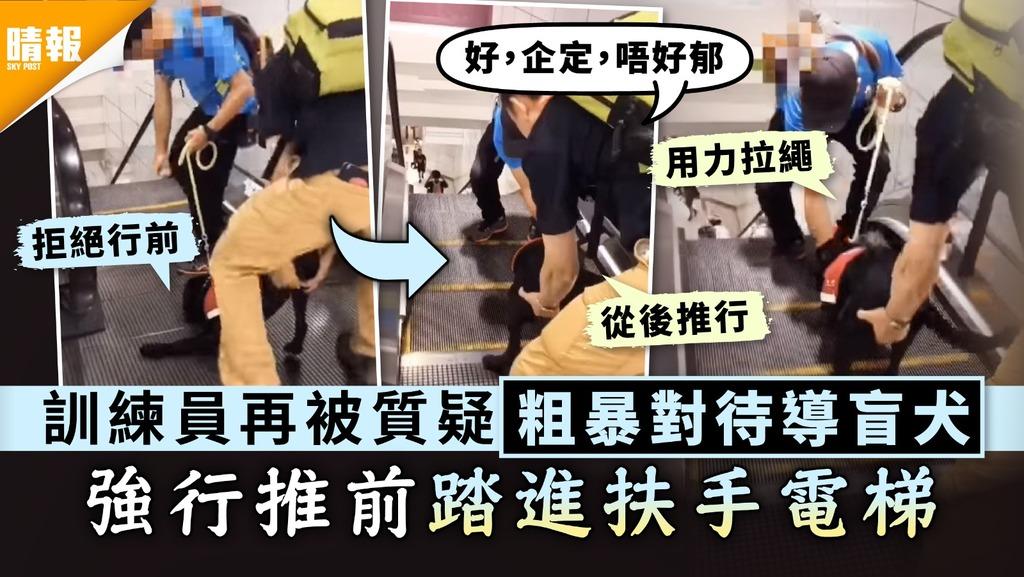 虐狗爭議|訓練員再被質疑粗暴對待導盲犬 強行推前踏進扶手電梯