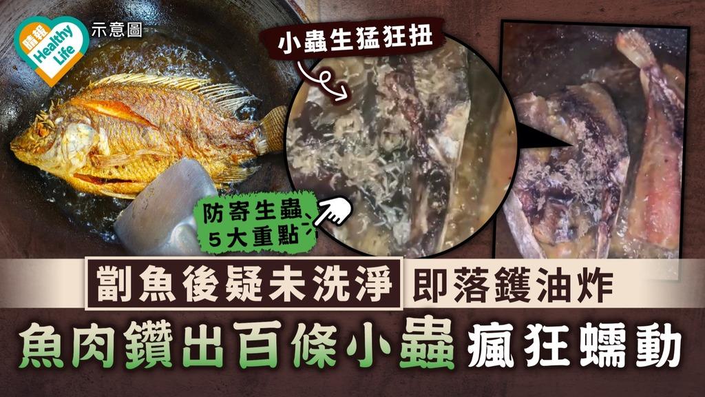食用安全|劏魚後疑未洗淨即落鑊油炸 魚肉鑽出百條小蟲瘋狂蠕動