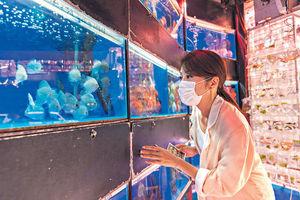巴塞爾藝術展5.21重來 旅發局乘勢推活動 鼓勵藝遊香港