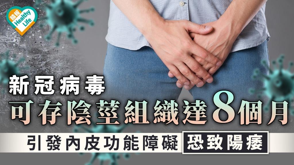 美國研究|新冠病毒可存陰莖組織達8個月 引發內皮功能障礙恐致陽痿
