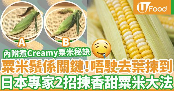 【挑選粟米】日本專家2招揀粟米方法  最重要看粟米鬚/無需去葉都知夠香甜!