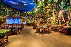 【童年回憶】香港人的童年回憶!12大已結業的經典主題餐廳 出奇老鼠/熱帶雨林/超人冰室/小熊國