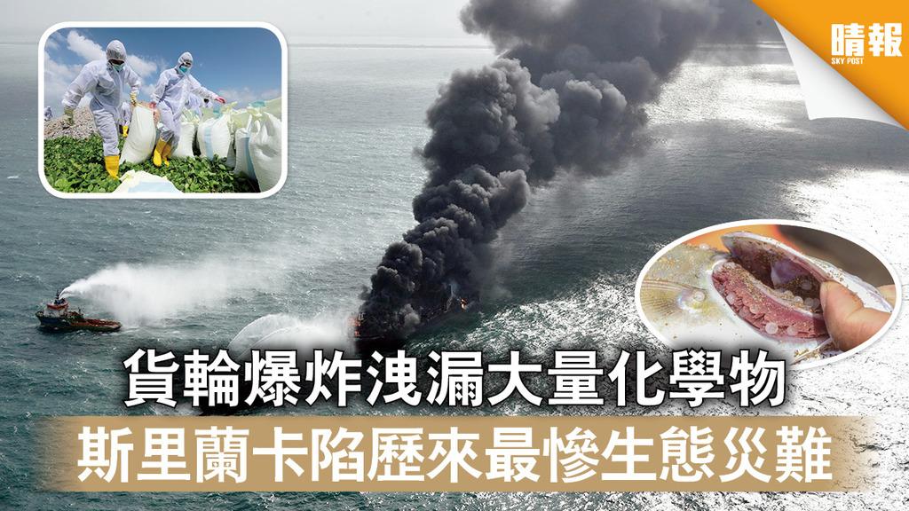 生態浩劫|貨輪爆炸洩漏大量化學物 斯里蘭卡陷歷來最慘生態災難