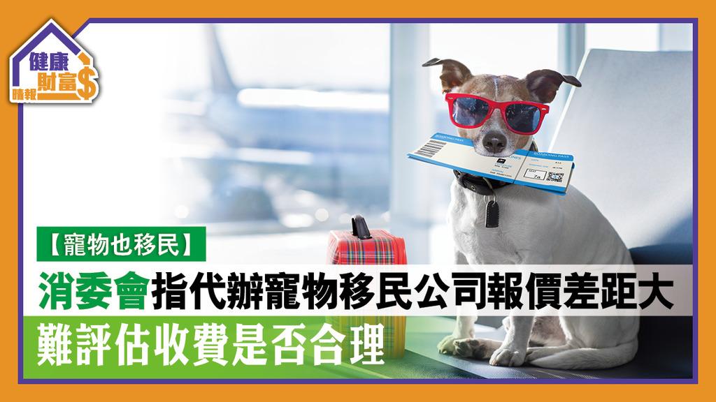 【寵物也移民】消委會指代辦寵物移民公司報價差距大 難評估收費是否合理