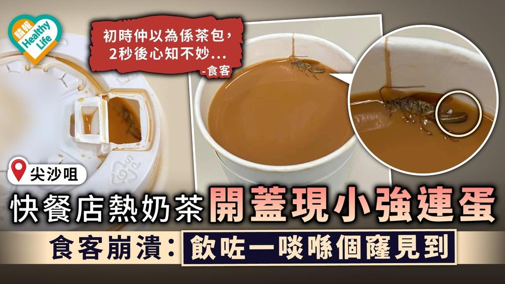 食用安全 尖沙咀快餐店熱奶茶開蓋現小強連蛋 食客崩潰:飲咗一啖喺個窿見到