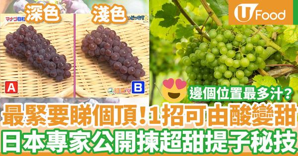 【揀提子】日本專家3招揀提子方法  拆解邊個位置最香甜多汁