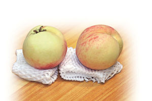 降血壓去水腫 水蜜桃成熟時 消暑清甜又多汁 山梨桃豐儉由人