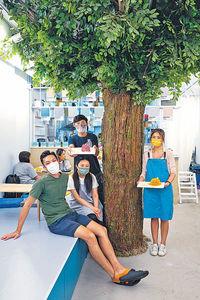 氣質咖啡室 大樹伴嘗繽紛甜品