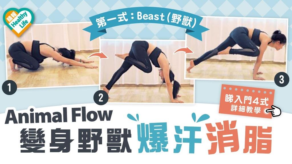 Health Plus │ 變身野獸爆汗消脂 即學Animal Flow入門4式