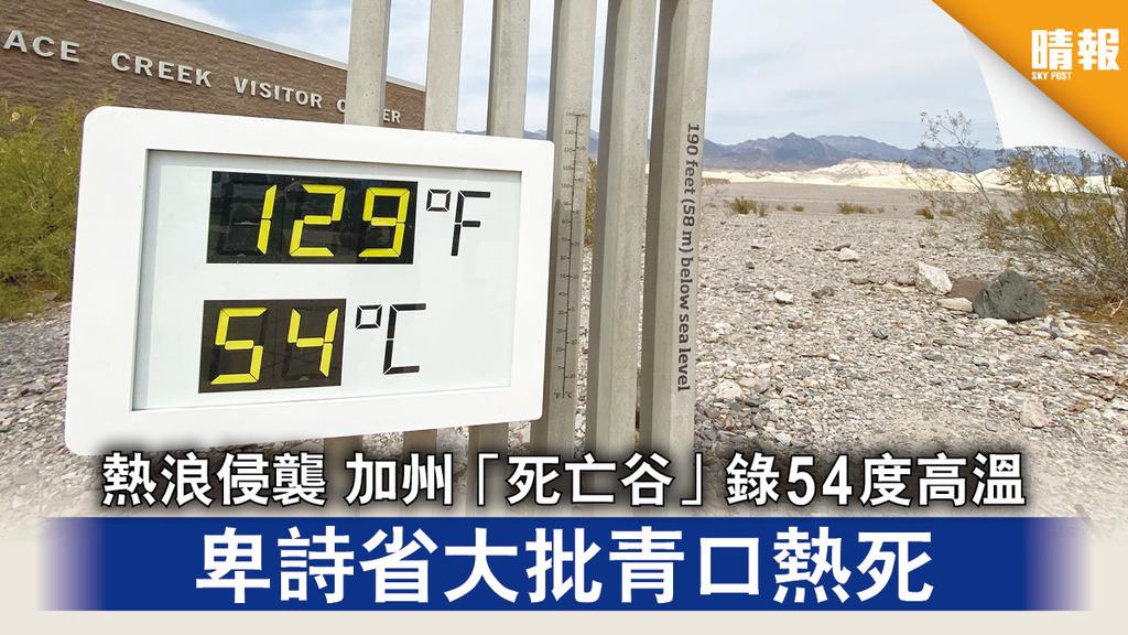 極端天氣|熱浪侵襲 加州「死亡谷」錄54度高溫 卑詩省大批青口熱死