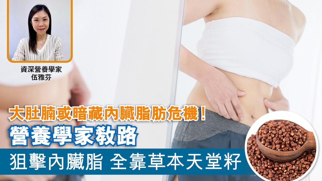 大肚腩或暗藏內臟脂肪危機!營養學家教路 草本天堂籽輕鬆減走內臟脂肪