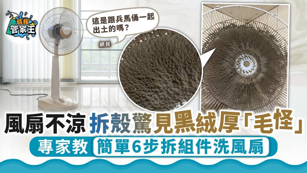 清洗風扇 風扇不涼拆殼驚見黑絨厚「毛怪」 專家教簡單6步拆組件洗風扇
