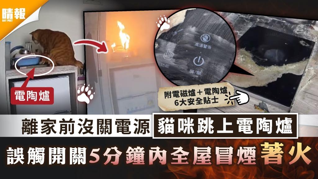 家居安全|離家前沒關電源貓咪跳上電陶爐 誤觸開關5分鐘內全屋冒煙著火