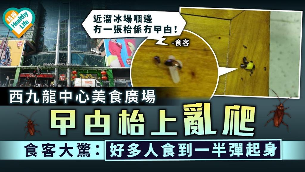環境衛生|西九龍中心美食廣場曱甴枱上亂爬 食客大驚:好多人食到一半彈起身