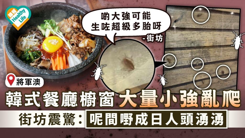 食用安全|韓式餐廳櫥窗大量小強亂爬 街坊震驚:呢間嘢成日人頭湧湧