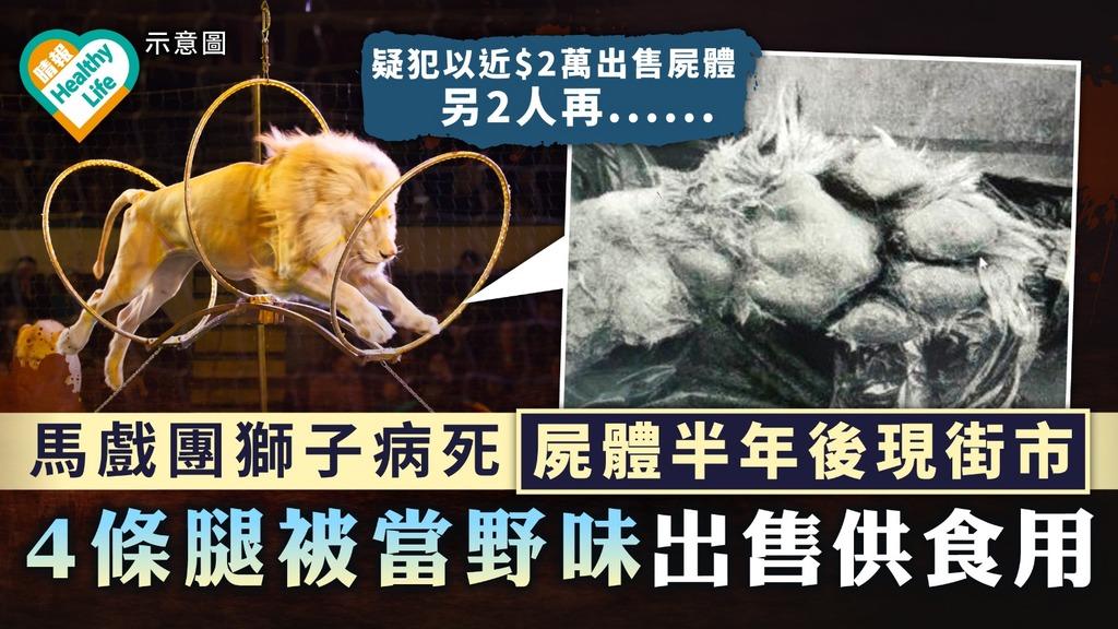 食用安全 內地馬戲團獅子病死 屍體半年後現街市 4條腿被當野味出售供食用