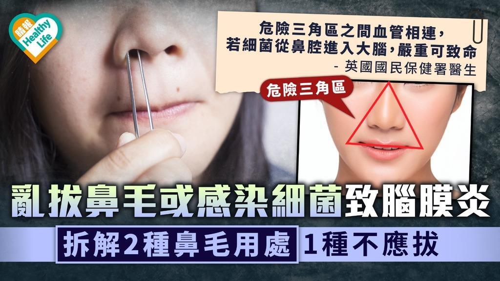 危險三角區|亂拔鼻毛或感染細菌致腦膜炎 拆解2種鼻毛用處1種不應拔