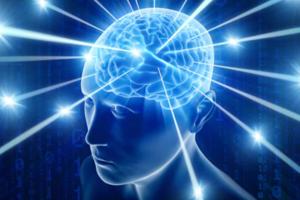 【補腦食物】健忘可能是腦細胞活力下降! 營養師推薦10大健康補腦食物
