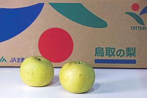 日韓梨多汁爽口 助中秋潤燥 混種新甘泉甜滑 新高梨抵食